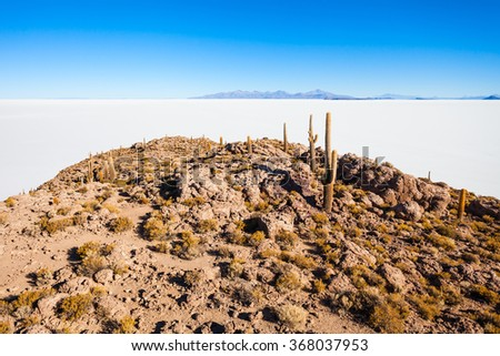 Cactus island on Salar de Uyuni (Salt Flat) near Uyuni, Bolivia - stock photo