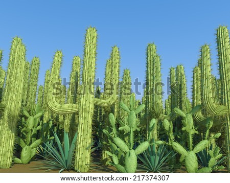cactus on a sky background - stock photo