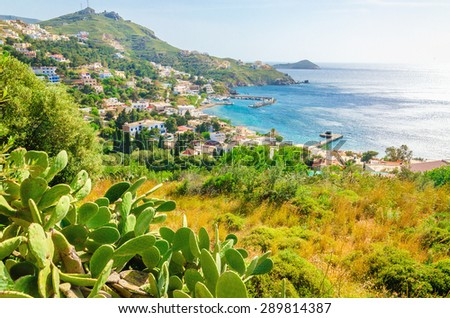 Cactuses and bay with typical Greek houses on the coast, Greek Islands, Aegean Sea - stock photo