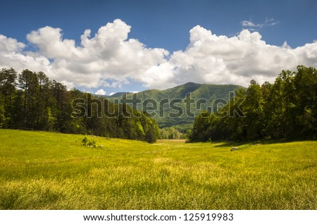 Cades Cove Great Smoky Mountains National Park Spring Scenic Landscape and Tennessee vacation outdoor travel destination - stock photo