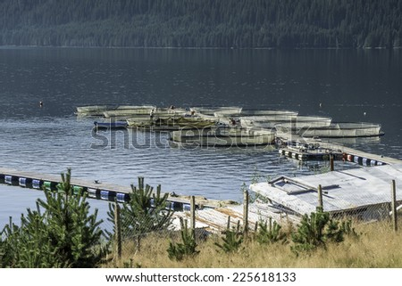 Cages for fish farming in lake - stock photo