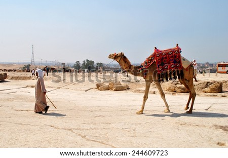 CAIRO - CIRCA JUNE 2014: Cameleer with camel near Cairo, Egypt - stock photo