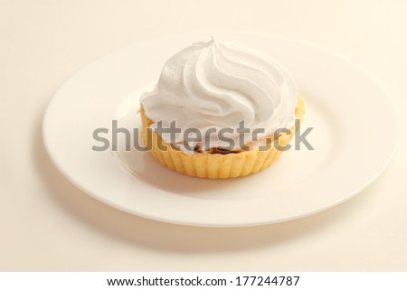 Cake with whipped cream on a plate - stock photo
