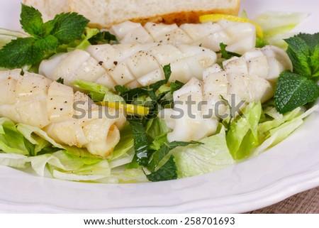 Calamari with green salad and lemon - stock photo
