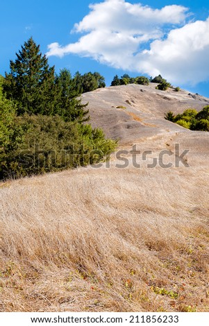 California hills with dry grass. Clouds but no rain. Location: Marin County near San Francisco. Concepts: California, drought, fire danger, climate change, global warming, conservation - stock photo