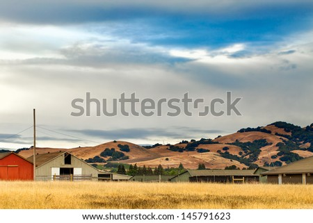California landscape with rolling golden hills, native oak trees, green vineyards and grazing ranch land.  Location: wine country region of Sonoma and Napa valley. - stock photo