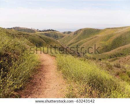 California spring - stock photo