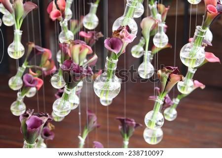 Calla Lily in Laboratory Glassware for decoration - stock photo
