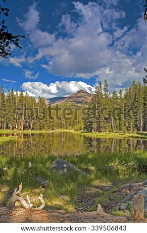 Calm and Peaceful Scenery of the World Famous Yosemite National Park in California, United States Of America. Vertical Composition. HDR Image - stock photo