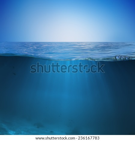 Calm sea with clear blue sky and underwater world discovered - stock photo
