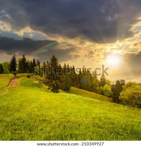 calm summer landscape in mountains. awesome coniferous forest near meadow  on hillside under epic sky with clouds at sunset with rainbow - stock photo
