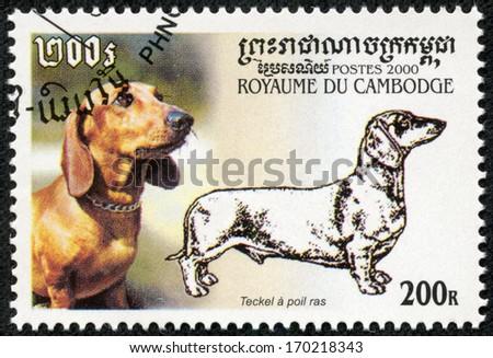 CAMBODIA - CIRCA 2000: stamp printed by Cambodia, shows dog, circa 2000 - stock photo
