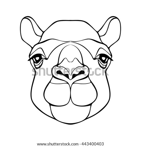 Camel. Head of a camel. Camel's head. Head of the animal with a detailed drawing of parts of the face. Camel head monochrome color with black outline. Cartoon camel. Camel logo - stock photo
