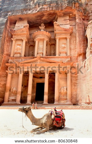 Camel in front of The Treasury in Petra, Jordan - stock photo