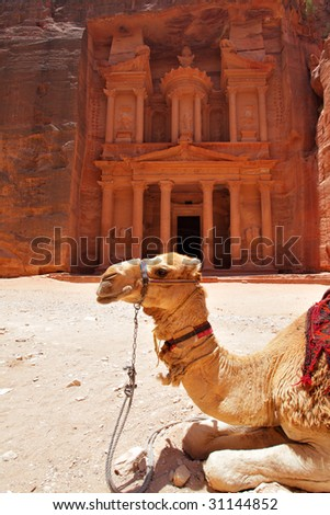 Camel near Treasury temple at Petra (Al Khazneh), Jordan - stock photo