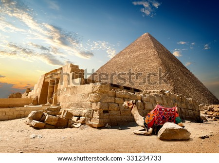 Camel rests near ruins of entrance to pyramid - stock photo