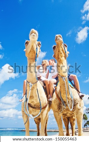 camel ride on wedding day (focus on faces of people) - stock photo