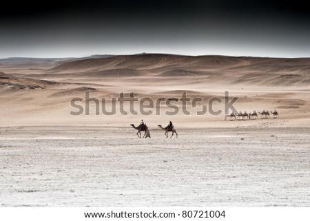 Camel riders in the desert, Egypt - stock photo