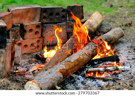 Camp fire burn in the forest - stock photo