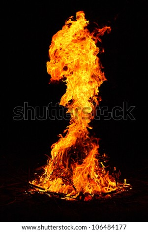 Campfire in the night. - stock photo