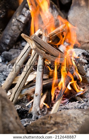 Campfire - This is a shot of a freshly lit campfire. - stock photo
