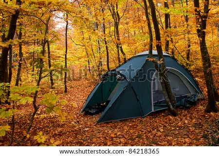 Camping equipment. Tent in the autumn forest - stock photo