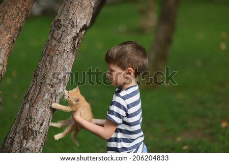 Camping near a tree on a green lawn boy plays with a cat - stock photo