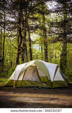 Camping Tent in Old Growth Forest Area - stock photo