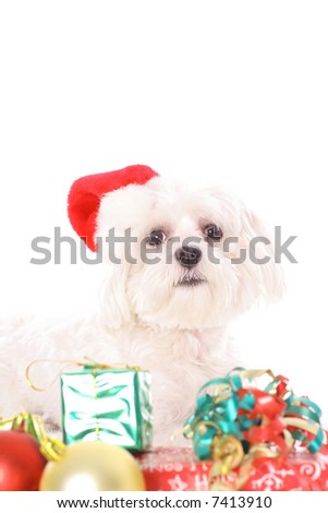Can I please open just one - stock photo