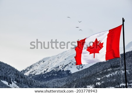 Canada flag and beautiful winter landscape - stock photo
