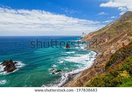Canary island - stock photo