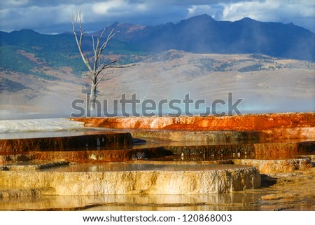 Canary Spring of the Mammoth Hot Springs in Yellowstone National Park - stock photo