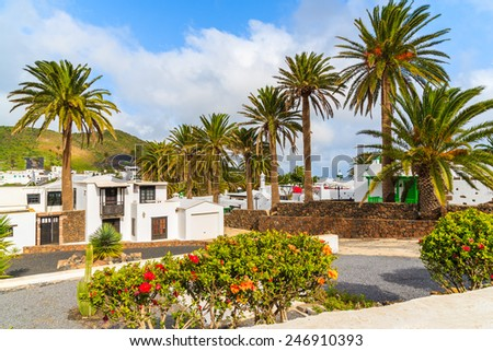 Canary style houses in palm tree landscape of Haria village, Lanzarote island, Spain - stock photo