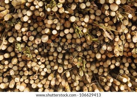 cane sugar stack in asian market, Laos - stock photo