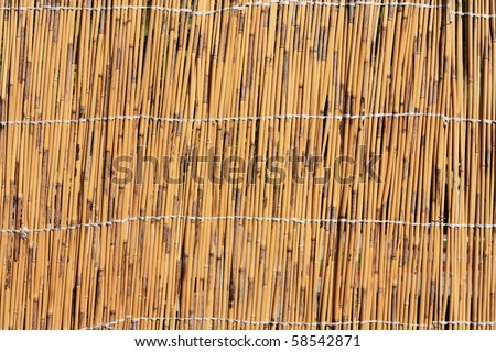 Cane texture - stock photo