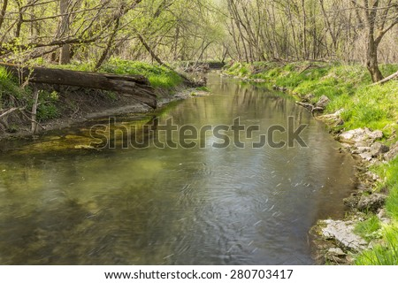 Canfield Creek In Spring - stock photo