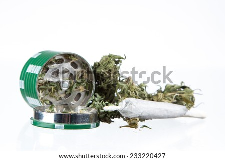 Cannabis dried plant, marijuana on white background - stock photo
