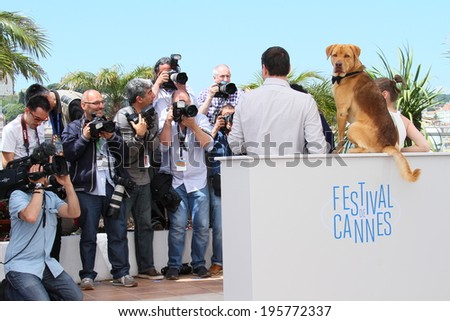 CANNES, FRANCE - MAY 17:  Director Kornel Mundruczo, Dog actor Hagen and actress Zsofia Psotta attend the 'Feher Isten' photocall at the 67th  Cannes Film Festival on May 17, 2014 in Cannes, France - stock photo