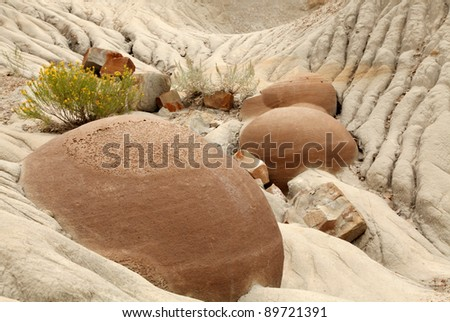 Cannonball Concretions Theodore Roosevelt National Park, North Unit - stock photo