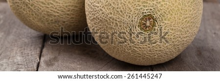 Cantaloupe Melon. Panoramic image. Selective focus. - stock photo