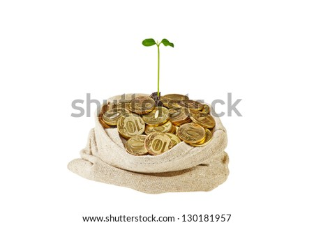 Canvas bag full with gold coins and a gentle green sprout. Isolated on white - stock photo