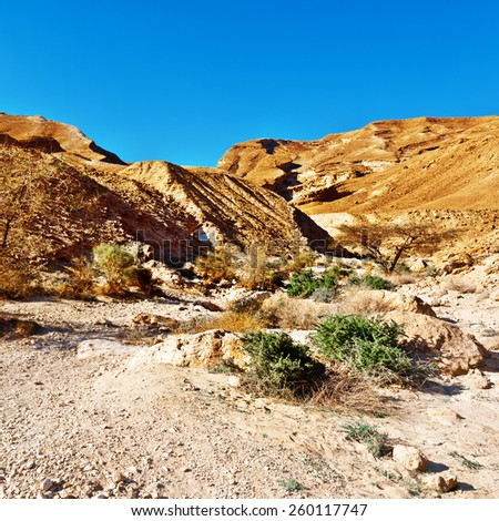 Canyon of the Negev Desert in Israel - stock photo
