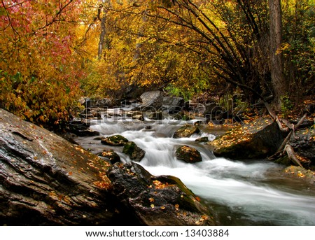 Canyon stream in autumn - stock photo