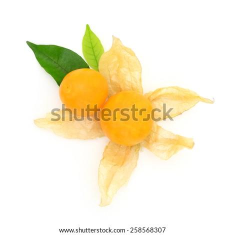 cape gooseberry fruit - stock photo