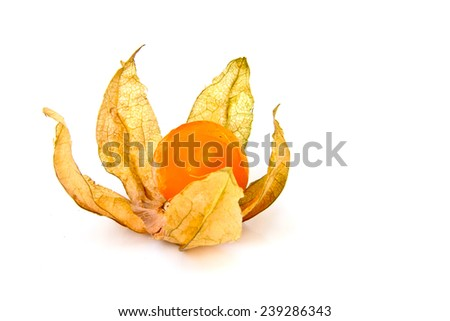 Cape Gooseberry or Physalis fruit on white background - stock photo