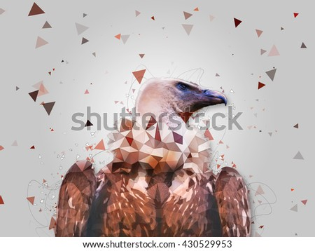 Cape Griffon Vulture - low poly effect - abstract illustration - stock photo