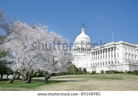 Capitol building in spring - Washington DC - stock photo
