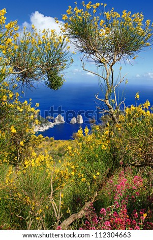 Capri island - stock photo