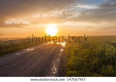 Car on the rural foggy road going to the sunset - stock photo