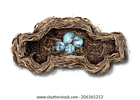 Car safety and auto insurance concept as a nest shaped as an automobile protecting a family of bird eggs as a concept and symbol for transportation security and driving safely on a white background. - stock photo